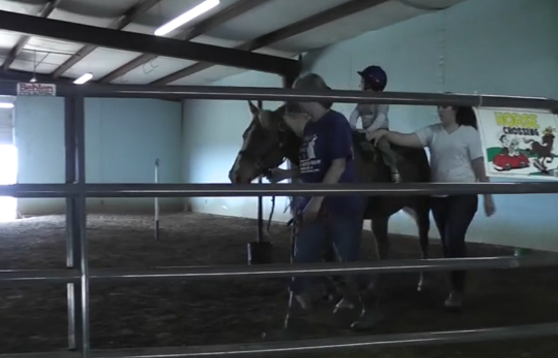 Children benefit from horse therapy