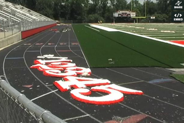 New turf updates field at Lion Stadium